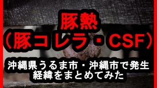 沖縄県うるま市・沖縄市で発生している豚熱(豚コレラ・CSF)の経緯をまとめてみた