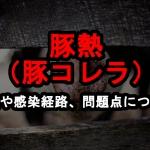 豚熱(豚コレラ)について症状や感染経路、問題点について【沖縄県うるま市・沖縄市で発生】