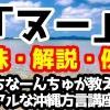「ヌー」の意味と解説、例文!うちなーんちゅが教えるリアルな沖縄方言(うちなーぐち)講座!
