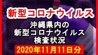 【2020年11月11日分】沖縄県内で実施されている新型コロナウイルスの検査状況について