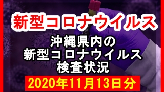 【2020年11月13日分】沖縄県内で実施されている新型コロナウイルスの検査状況について