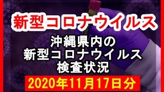 【2020年11月17日分】沖縄県内で実施されている新型コロナウイルスの検査状況について