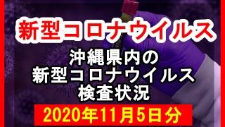 【2020年11月5日分】沖縄県内で実施されている新型コロナウイルスの検査状況について