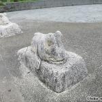 【2021年】連結型の巨大遊具が楽しすぎる!沖縄市の黒潮公園は広場と巨大遊具が魅力的な公園です!_おたまじゃくし