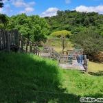【2021年】遊具が密集+目立つすべり台が特徴!沖縄市の八重島公園に遊びに行ってみよう!Bエリア_巨大滑り台3