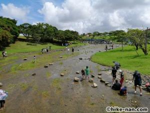 うるま市の倉敷ダム「やんばるの森(ヤンバルムイ)」水遊び体験をご紹介します!_こちらも橋の上からの景色です