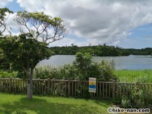 うるま市の倉敷ダム「やんばるの森(ヤンバルムイ)」水遊び体験をご紹介します!_橋の向こうにはダム湖が見えます