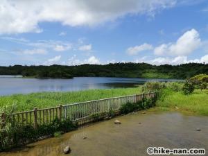うるま市の倉敷ダム「やんばるの森(ヤンバルムイ)」水遊び体験をご紹介します!_橋の裏側にもちょっとした水辺があります