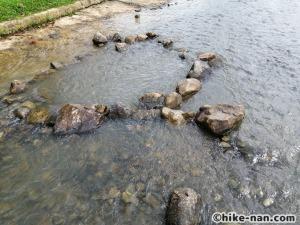 うるま市の倉敷ダム「やんばるの森(ヤンバルムイ)」水遊び体験をご紹介します!_結構大きい溜池がありました