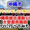 【2021年】言うことなしの大型公園!沖縄市の沖縄県総合運動公園内にある大型遊具施設に遊びに行ってみた!
